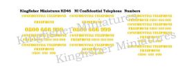 NI Confidential Telephone Numbers Type 2 - Yellow